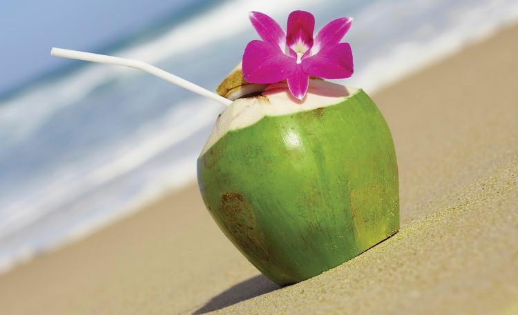 Dừa tươi giải khát cho cơ thể hiệu quả.