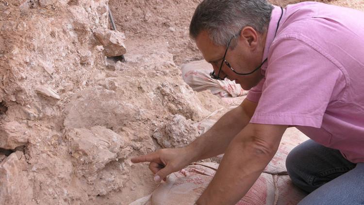 Nhà khoa học Hubris đang tìm kiếm các hóa thạch người cổ đại.