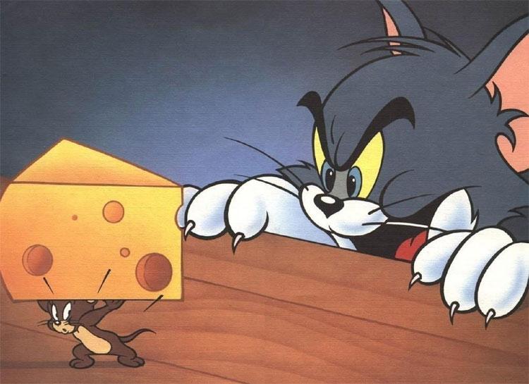 Trên phim diễn sâu vậy thôi chứ ngoài đời Jerry chẳng thích phô mai chút nào.