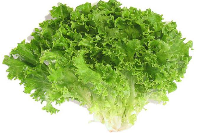 Bất kỳ loại rau xà lách nào đều dồi dào vitamin K.