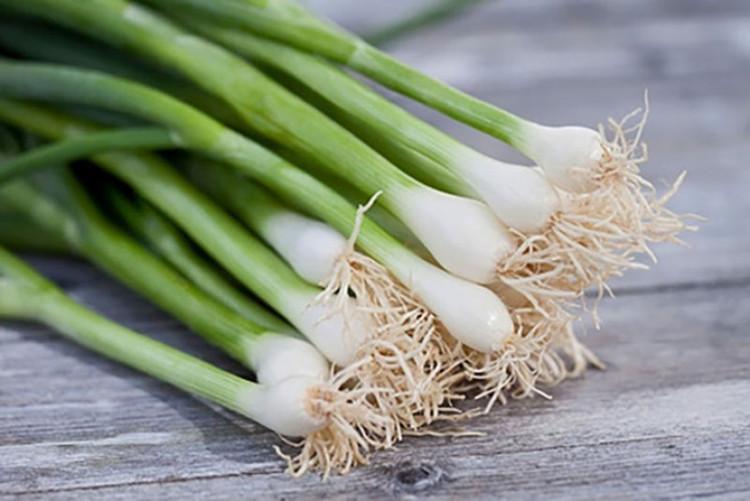 Hành lá chứa nhiều chất xơ, vitamin A, C, hay allyl sulfide.