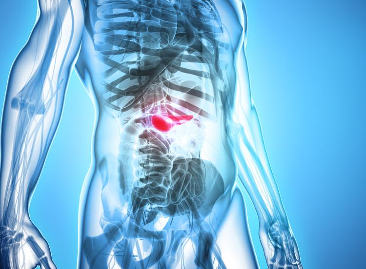 Ung thư tụy bắt đầu ở các mô của tuyến tụy nằm ở phần dưới dạ dày.