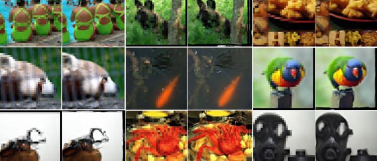 Những hình ảnh mà AI của Google tái tạo lại.