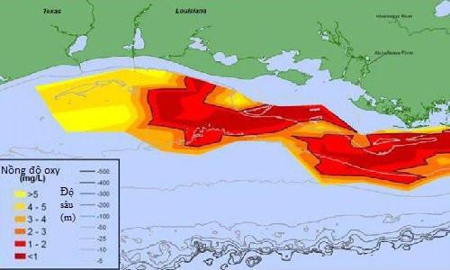 Vùng chết trên vịnh Mexico tăng gấp đôi kích thước trong năm nay.
