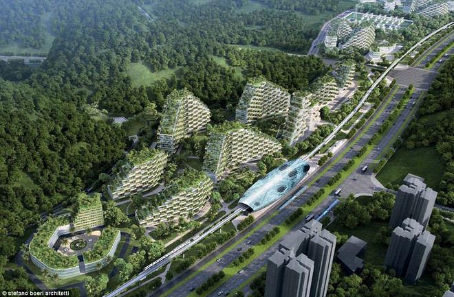 """Dự án tham vọng """"Thành phố rừng xanh"""" tại Liễu Châu"""