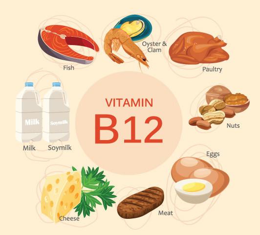 Vitamin B12 cho phép cơ thể đốt cháy nhiều calo, giảm chất béo dự trữ.