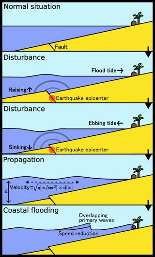 Sự hình thành sóng thần.