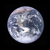 """Trái Đất đang ở trong đợt """"đại tuyệt chủng"""" thứ 6"""