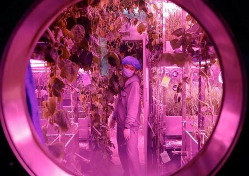 Cây cối và nước tiểu cũng được tái chế trên tàu không gian phục vụ con người.