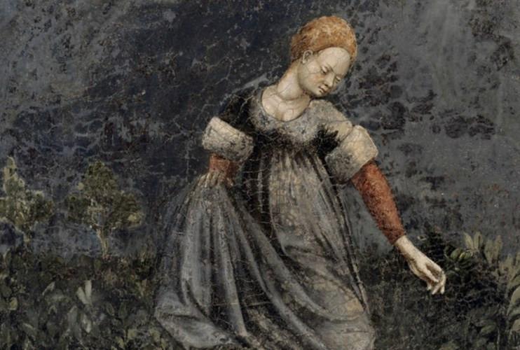 Người dân thời Trung cổ sử dụng rêu, da và vải làm giấy vệ sinh.