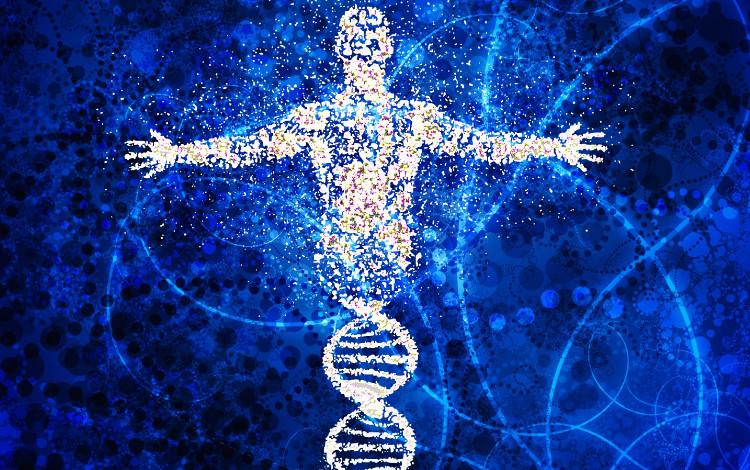 Lưu trữ dữ liệu trên ADN