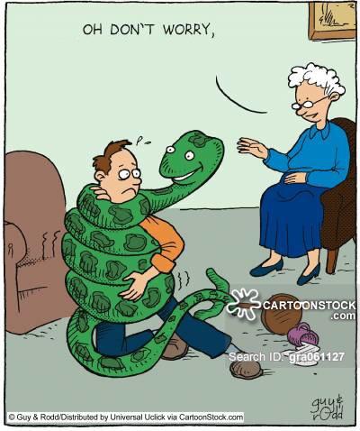 Con người đã tiến hóa để cảm thấy sợ rắn.