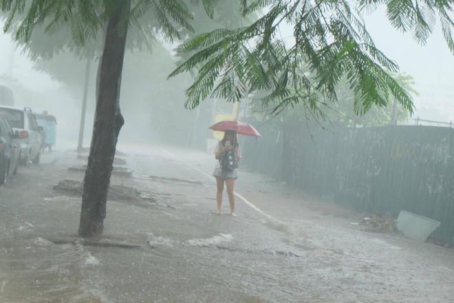 Một cô gái che ô đứng chờ xe giữa cơn mưa lớn