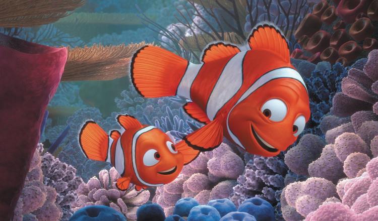 """Nhưng sự thật là ông bố Marlin của Nemo sẽ """"chuyển giới"""" sau khi vợ anh qua đời."""