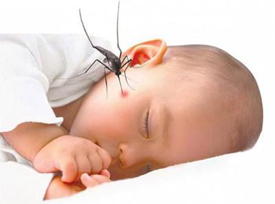 Bệnh sốt xuất huyết là bệnh truyền nhiễm cấp tính.