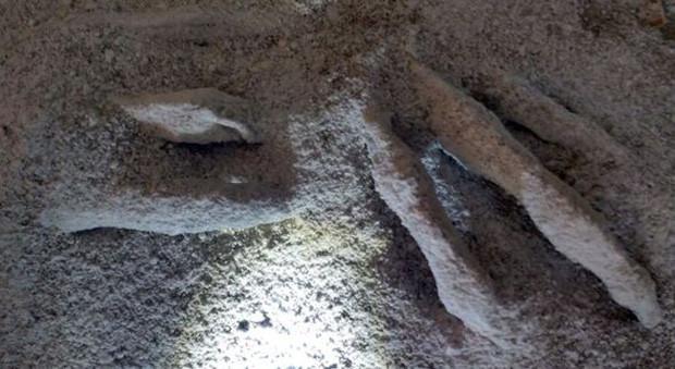 Mảnh xương được tìm thấy bên trong hầm mộ.