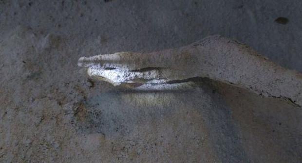 Giới khoa học Peru không tin rằng đây là hài cốt của người ngoài hành tinh cách đây 1.700 năm.
