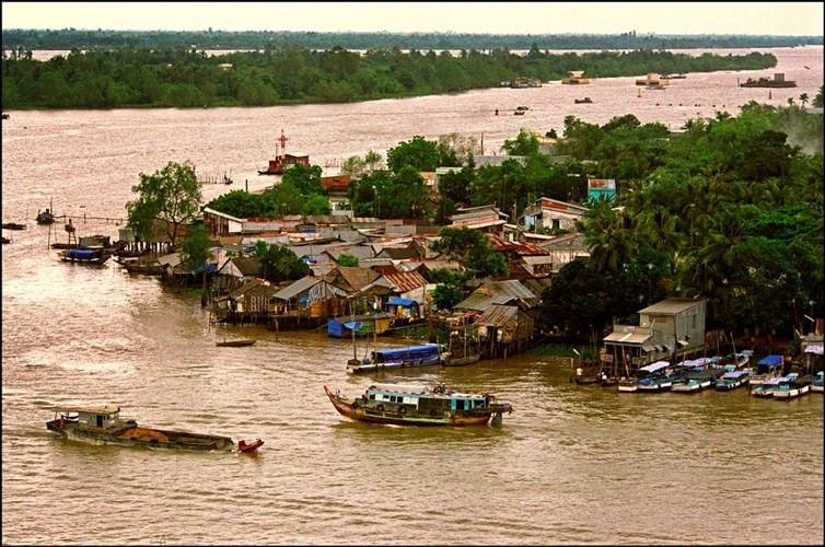 Làng chài trên sông Hậu ở Cần Thơ.