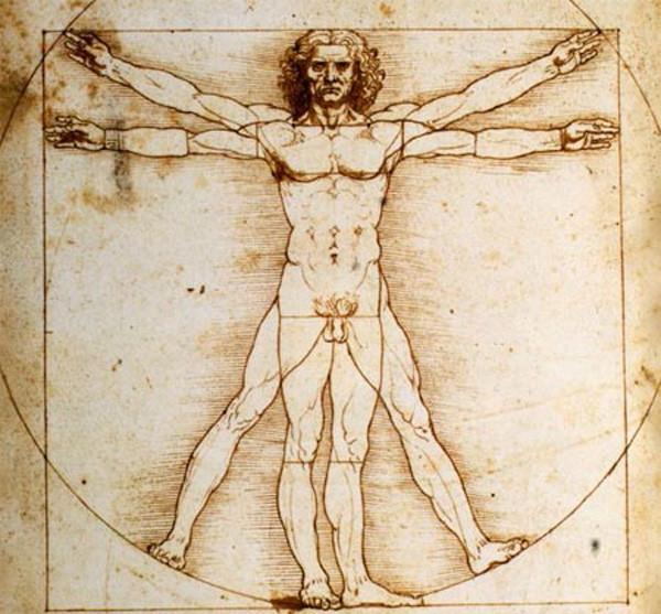Tranh Người Vitruvius của danh họa Leonardo Da Vinci.
