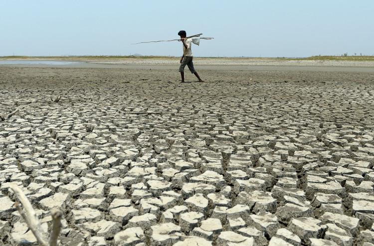 Hạn hán nặng nề ở Ấn Độ.