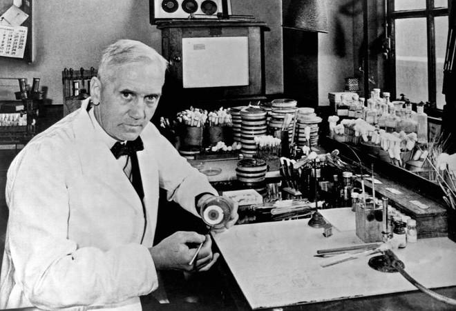 """Chân dung bác sĩ Alexander Fleming trong phòng thí nghiệm của mình, nơi penicillin được """"khai sinh""""."""