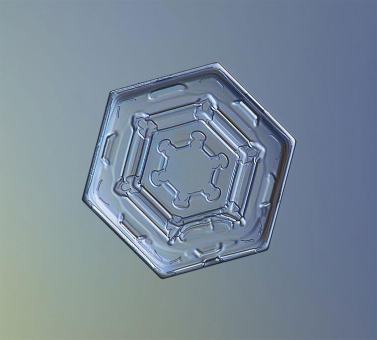 Bông tuyết dạng hình đĩa phẳng