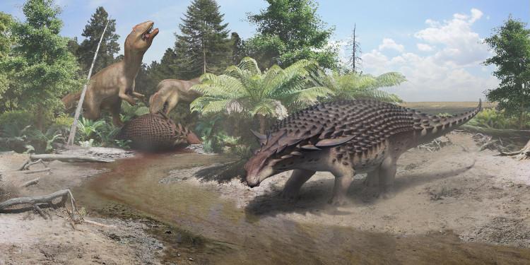 Màu da tương phản giúp nodosaur trốn các loài thú ăn thịt.