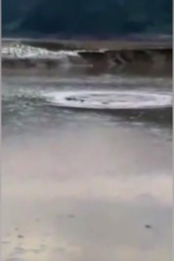 """Nhiều người xem video và gọi sinh vật này là """"quái vật Loch Ness Trung Quốc""""."""