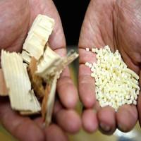 Nhật Bản muốn lấy gỗ làm phụ tùng ô tô cho nó nhẹ