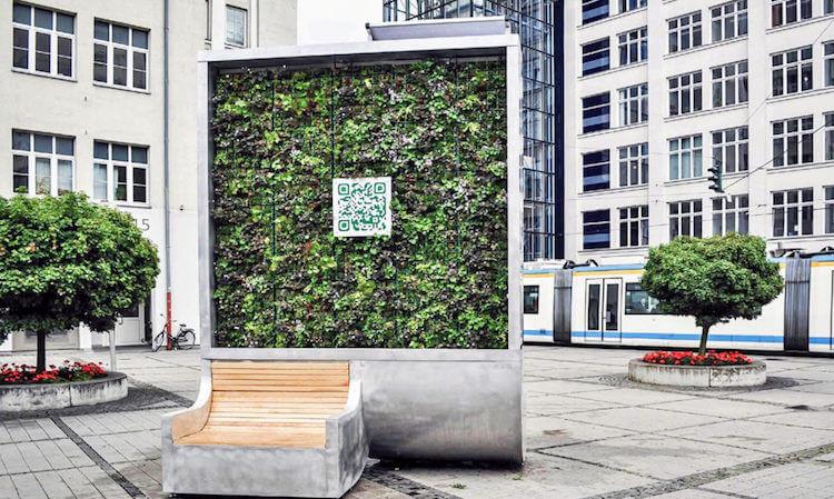 Trong một năm, CityTrêe loại bỏ được 240 tấn CO2.