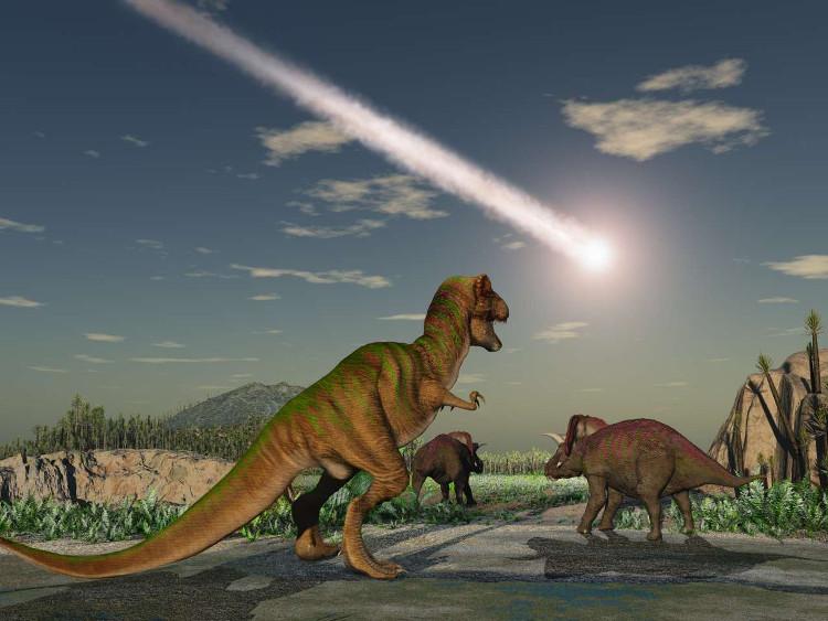 Hơn 3/4 số loài trên Trái Đất tuyệt chủng sau khi tiểu hành tinh đâm xuống hành tinh 65 triệu năm trước.