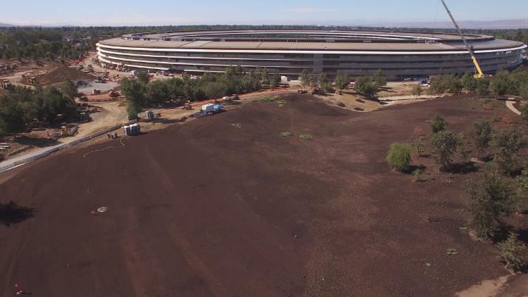 Ý tưởng là, khi hoàn thành, Apple Park sẽ trông giống như một khu rừng tươi tốt hoặc công viên với nhiều cây cối ở Bắc California.
