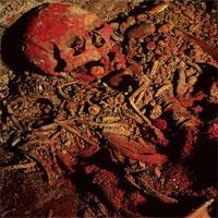 """Phát hiện bộ xương """"Nữ hoàng Đỏ"""" của người Maya"""