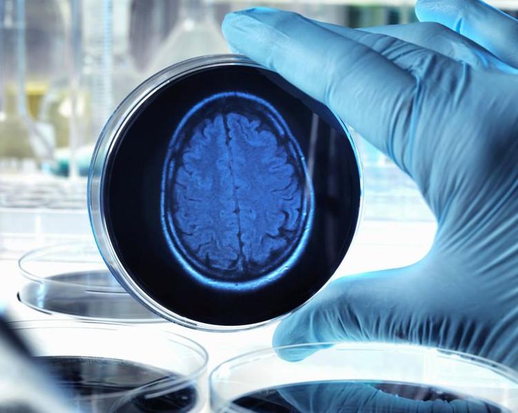 Các nhà khoa học kỳ vọng rằng công nghệ quét não phát triển sẽ cho họ những bằng chứng ngày một rõ ràng hơn