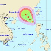 Áp thấp nhiệt đới đã mạnh lên thành bão số 8