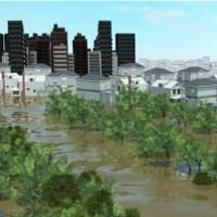 Video: Đường rút của 56 tỷ m3 nước mưa trút xuống Houston