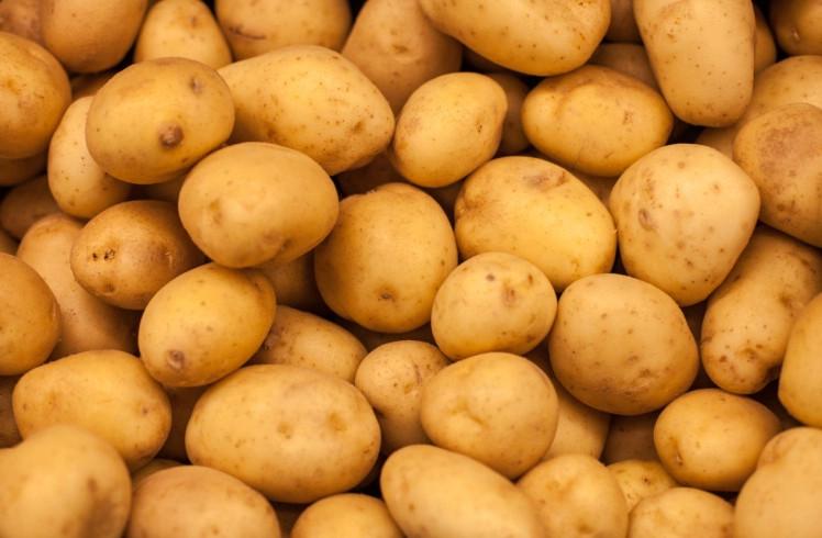 Khoai tây có nguồn gốc từ Peru.