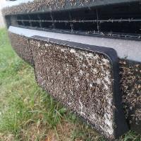 """Bão Harvey vừa tan, xuất hiện đàn muỗi hàng triệu con """"xâm chiếm"""" Texas"""
