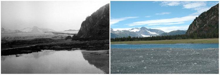 Sông băng Bear, Alaska