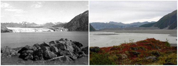 Sông băng Carroll Glacier, Alaska