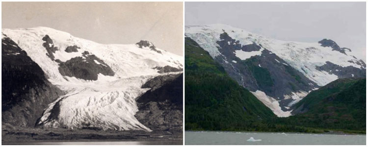 Sông băng Toboggan Glacier, Alaska