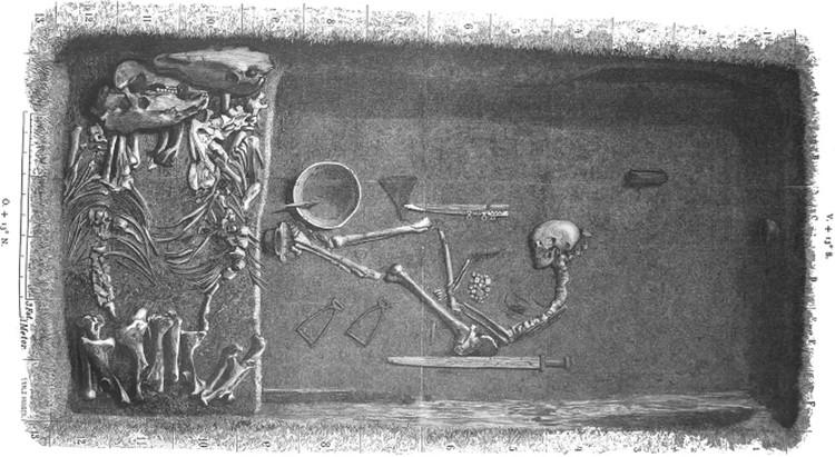 Bộ xương của nữ chiến binh Viking được chôn cùng vũ khí và 2 con ngựa.