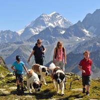 Những luật cấm lạ lùng nhưng có lý ở Thụy Sĩ