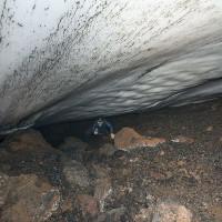 Bí ẩn trong những động băng ở Nam Cực