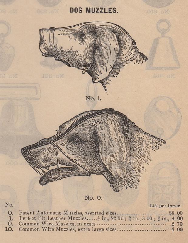 Vào thập niên 1900, những chiếc rọ mõm mới xuất hiện.