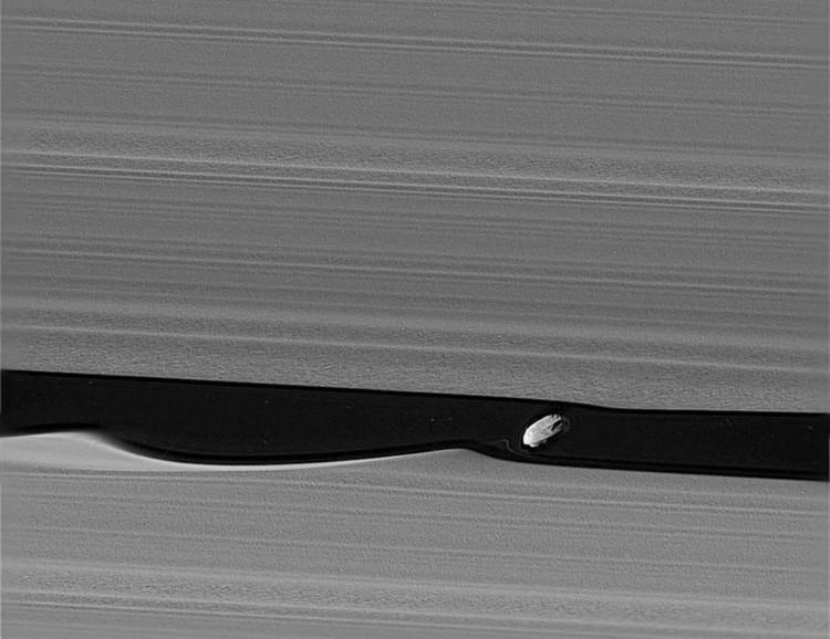 Vệ tinh Daphnis của Sao Thổ ẩn hiện ở phía ngoài vành đai.