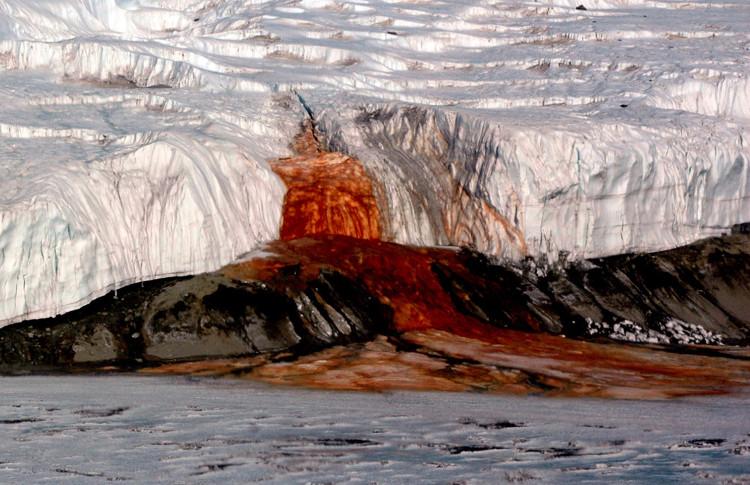 Dòng nước đỏ như máu chảy ra từ sông băng ở Nam Cực.