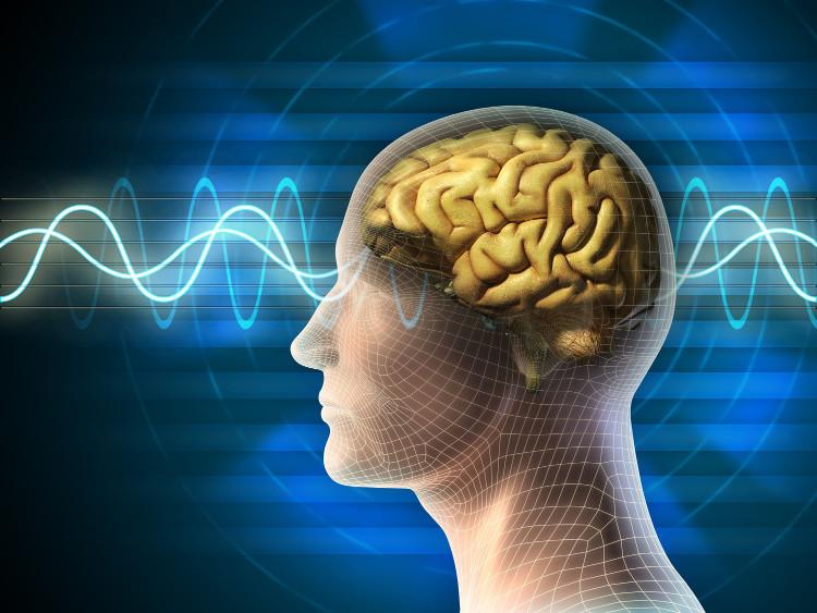Thể xác và tâm thần có mối liên hệ chặt chẽ với nhau.