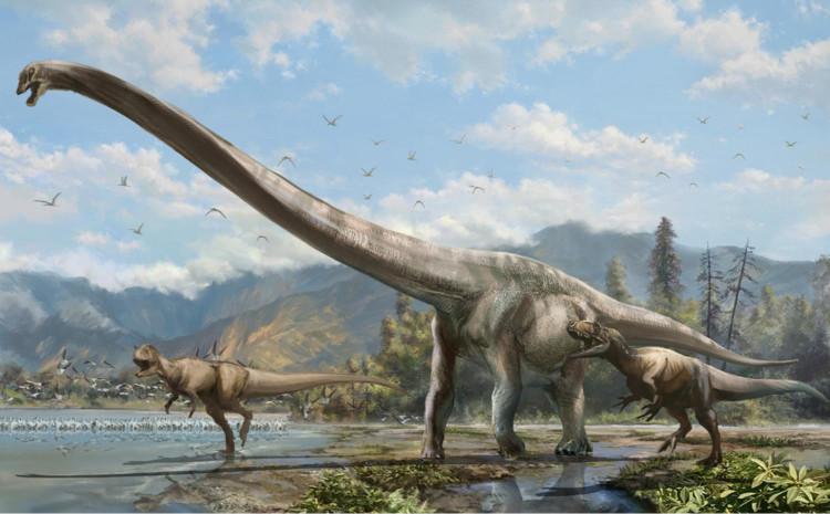 Loài khủng long cổ dài có thể thu nhỏ kích thước khi thức ăn dồi dào.