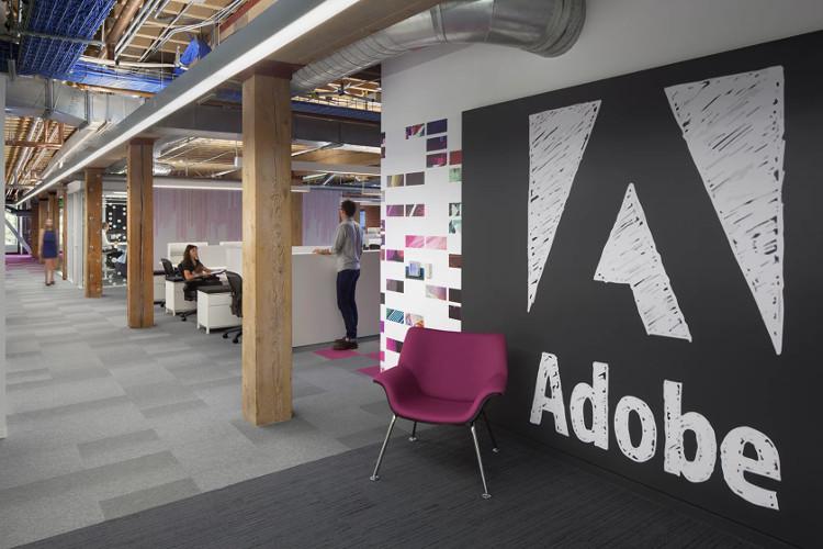 Adobe: Mua bảo hiểm cho thú cưng của nhân viên